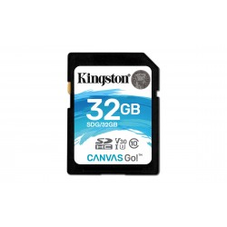 Carte mémoire Secure Digital (SD) Kingston 32 Go Canvas Go! SDHC Class 10
